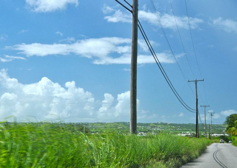 street view in bim